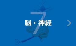 7 脳・神経