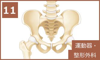 11 運動器・整形外科
